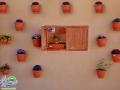 گزارش خبری/جشنواره فرهنگی هنری نوبهار در دل شهر