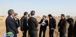 گزارش تصویری/ بازدید مدیران جهاد کشاورزی استان از محدوده طرح تفصیلی شهر مبارکه