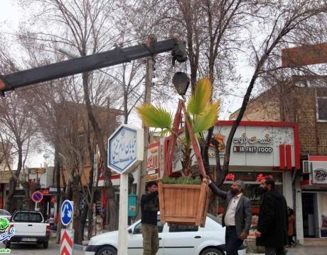 گزارش تصویری / استقبال از بهار /روایتی از اقدام و تلاش در حوزه فضای سبز شهری