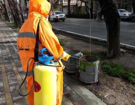 ضدعفونی روزانه سرویسهای بهداشتی ،سطل های زباله و ایستگاه های اتوبوس سطح شهر