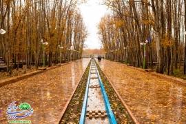 بوستان ساحلی سرارود/فصل پاییز