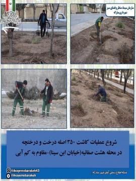 شروع عملیات کاشت 350اصله درخت و درختچه در محله8 صفائیه (خیابان ابن سینا) مقاوم به کم آبی